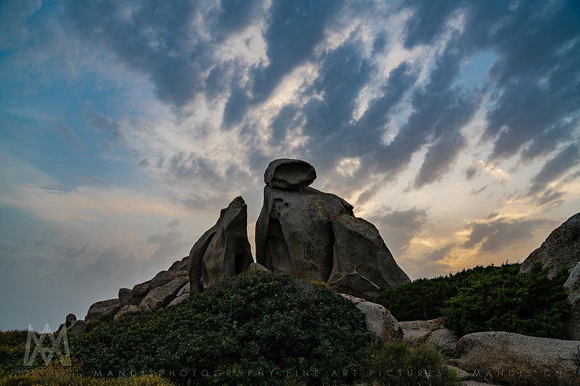 87 | Stone Bear |  Capo Testo