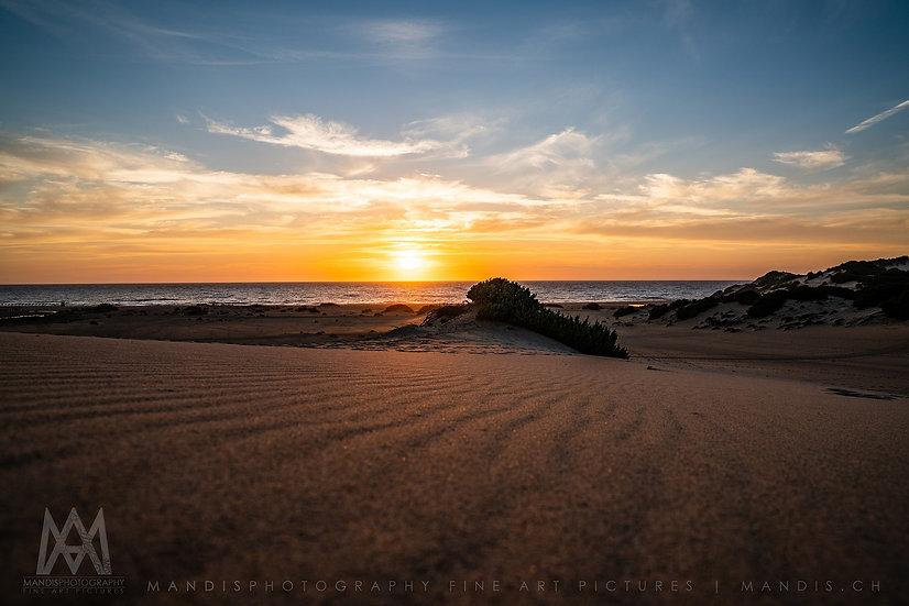 97 | Sand Dune |  Sardegna