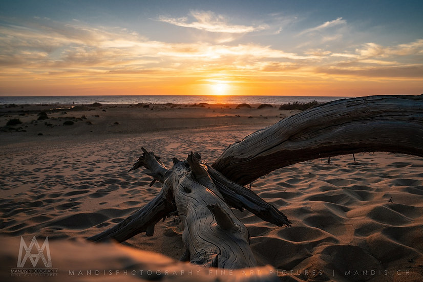 95   Sole e Sabbia    Sardegna