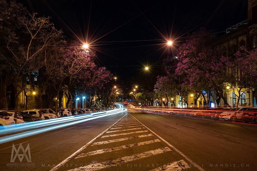 81   Blossom & Street    Cagliari