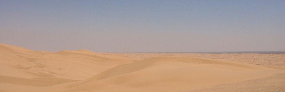 DesertStrip_edited.jpg