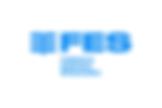 FES-meskiebranie-logotyp kopia.png