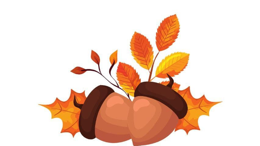 Fall Themed English Alphabets