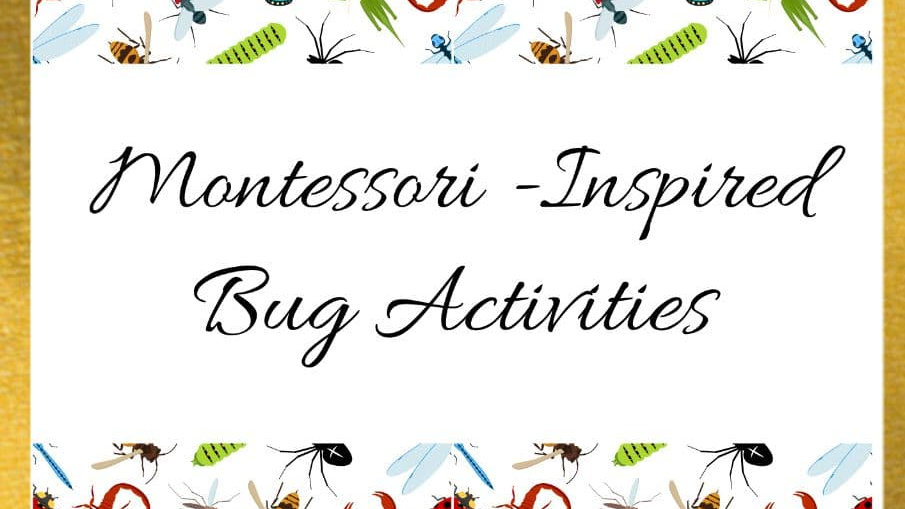 Montessori-Inspired Bug Activity