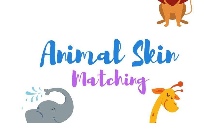 Animal Skin Matching Cards