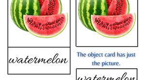 What are Montessori Nomenclature Cards? & How to use them?