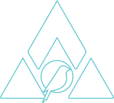 BBMT.wireframe.triangle.blue.png