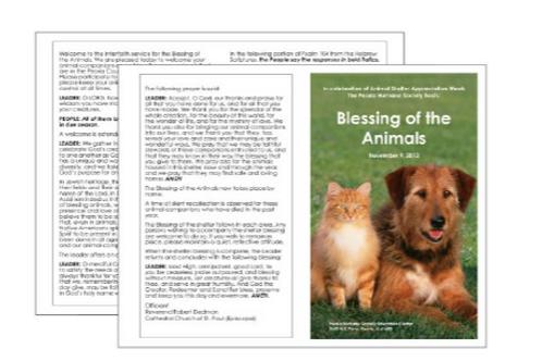 "8.5"" x 11"" Folded Brochures"