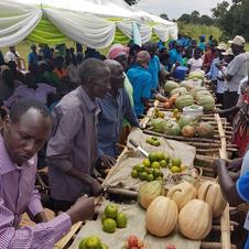 StepUp farmers at market.