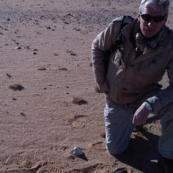 Unexploded ordnance - Western Sahara