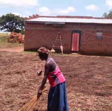 beating crops in village.jpg