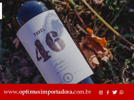 A Optimus Importadora te mostra a rota do vinho na Argentina