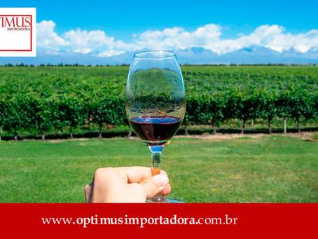 Conheça a rota do vinho na Argentina