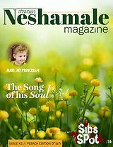 neshalame_magazine_issue 2 colored_print