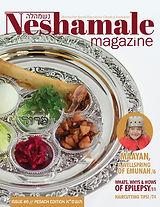 27823.6.neshalame_6_cover.jpg