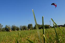 landkiting (15)