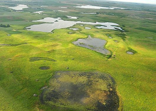800px-Grassland_conservation_easement_on
