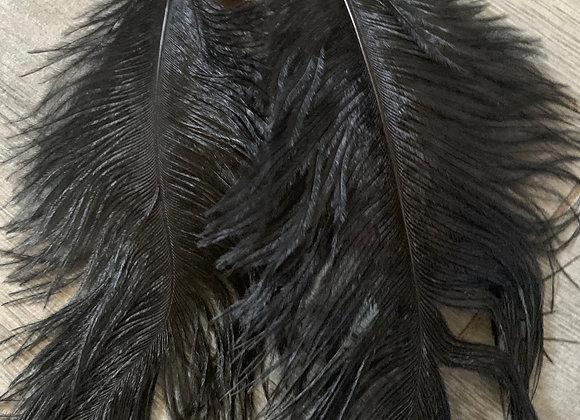 Feathery set
