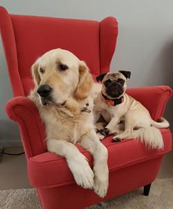 Cosmo und Oskar