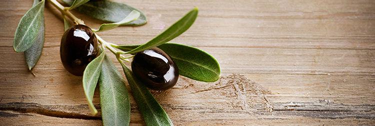 Unser Olivenöl kommt aus Griechenland und ist unbehandelt, kaltgepresst.
