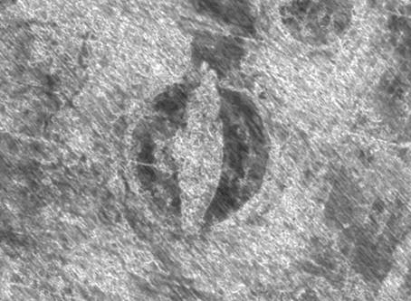FINALMENTE A ESCAVAÇÃO DO NAVIO VIKING DESCOBERTO NA NORUEGA TEVE INÍCIO — O PRIMEIRO EM 100 ANOS