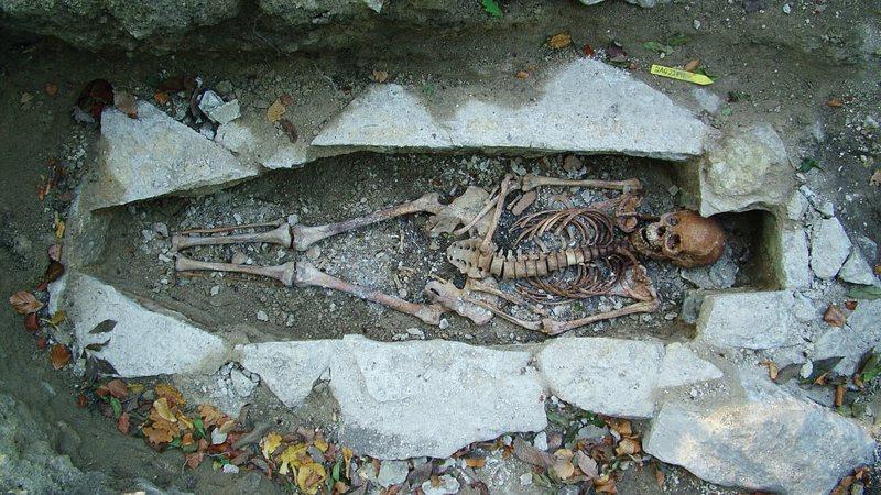 Pesquisa trouxe novas descobertas sobre os vikings e as suas origens