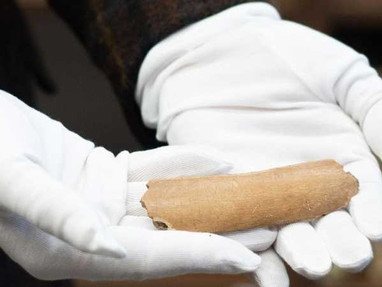 RUNIC LETTERS SCRATCHED INTO 7TH CENTURY COW BONE COULD CHANGE HISTORY