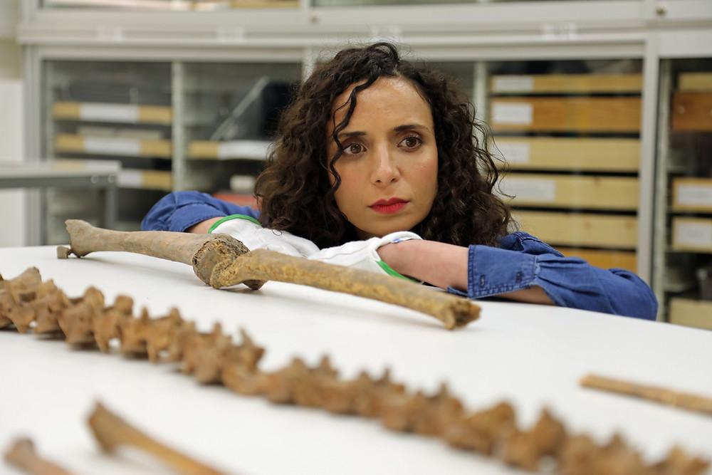 Ella al-Shamahi examining Viking bones at the Swedish History Museum in Stockholm. (National Geographic/Eloisa Noble)