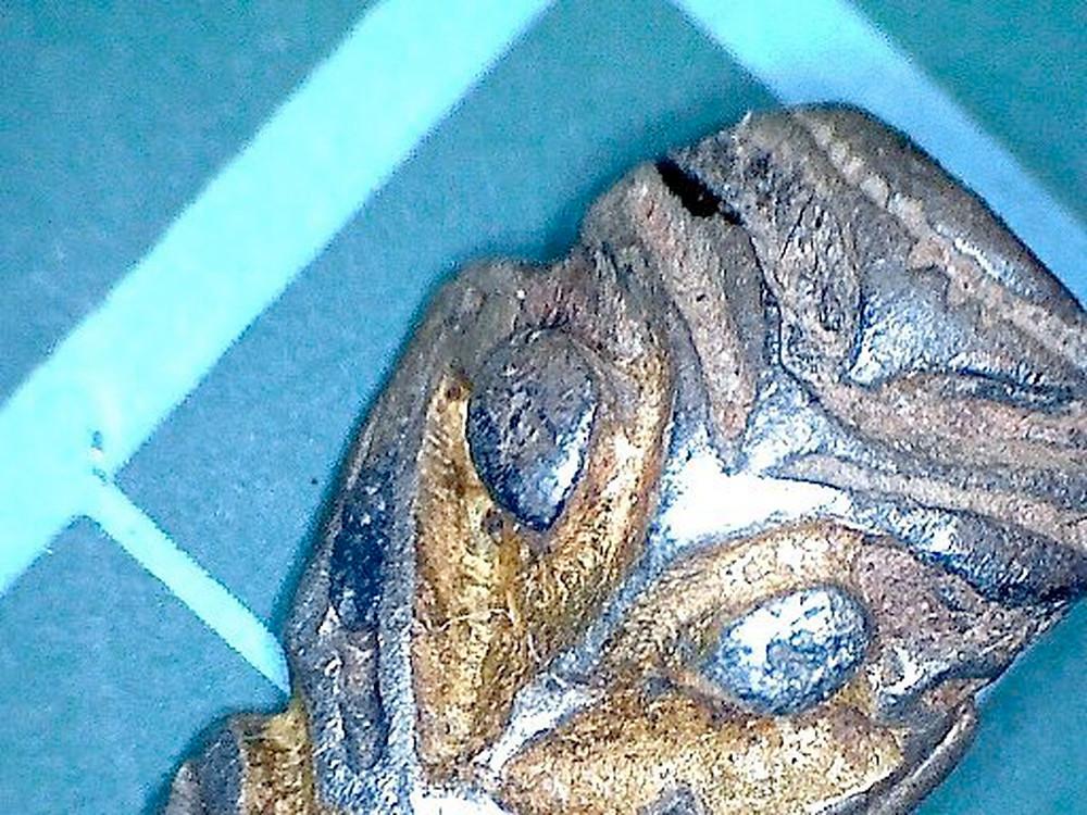 A ponta de uma pulseira de prata da Era Viking encontrada na Inglaterra foi declarada um tesouro