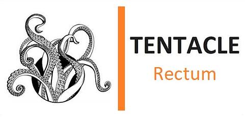 Logo rectum clean.png