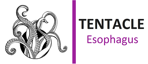 TENTACLE esophagus.png