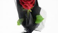 Single Rose Bouquet