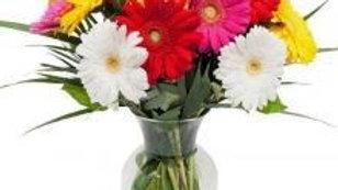 12 Mixed Gerberas Vase