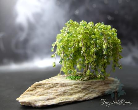 Miniature weeping tree