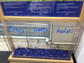 Help Us Bag a Share of Tesco's Community Fund