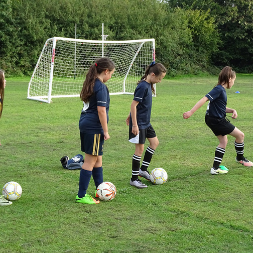 Free Taster Sessions