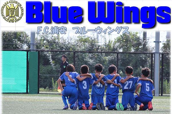 bluewing_top.jpg