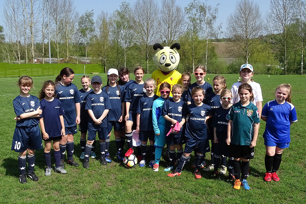 Harry the Hornet meets the Starlets