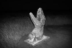 Fishhooks-12, Buried dinosaur, 75x100cm, C print, 2014