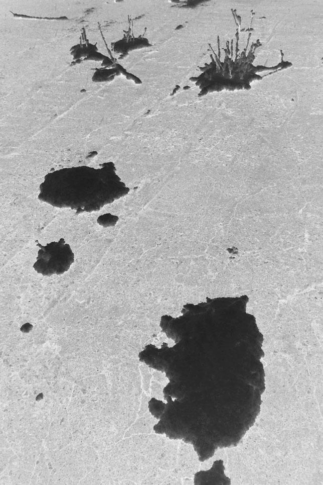 Fishhooks-57, reversal snow, 50x75cm,C p