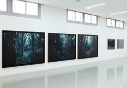 Daegu photo biennale 2012-2