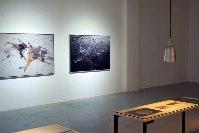 GCC Solo exhibition-2015-2