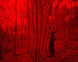 Redscape-11, 120x150cm, C print, 2010