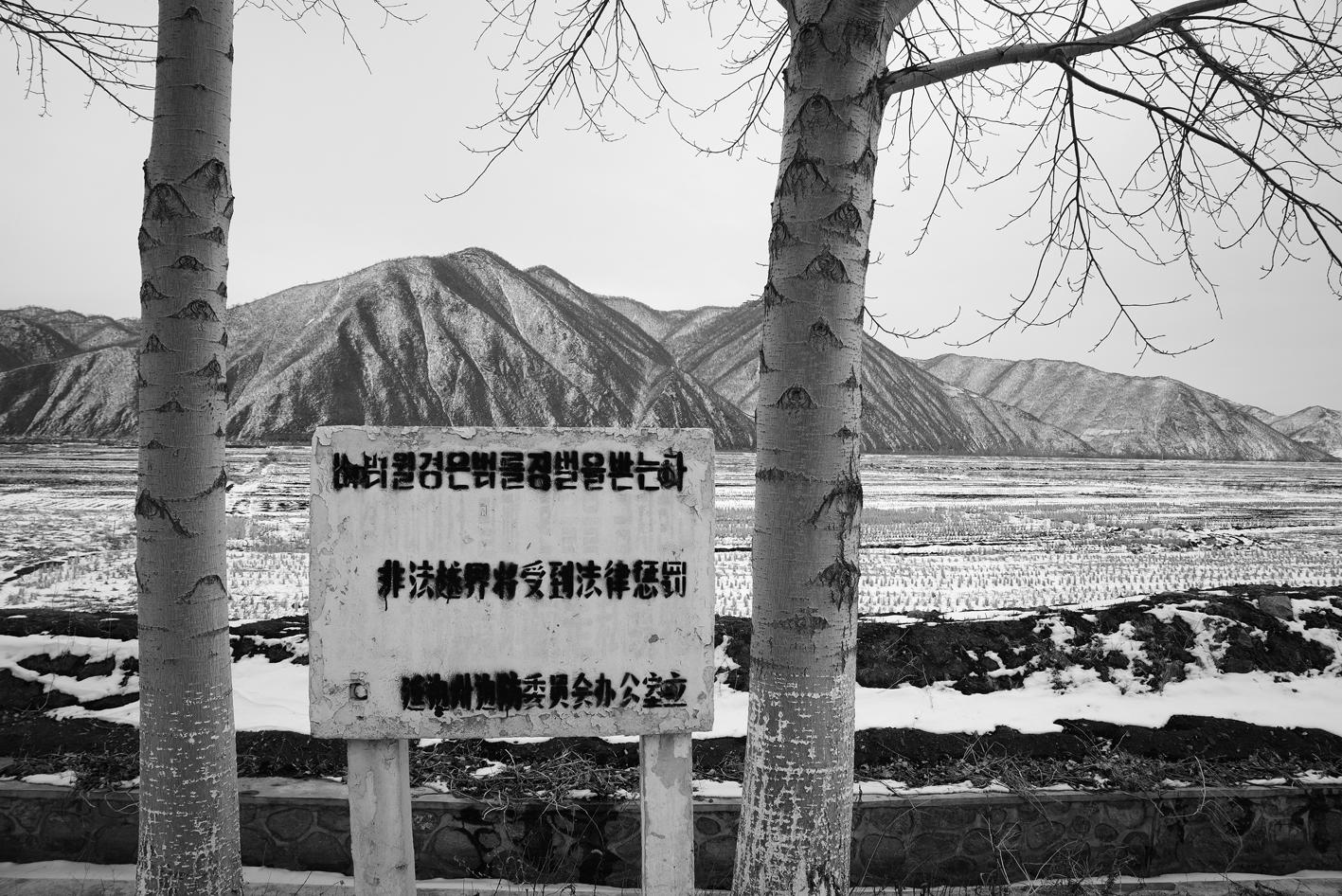 TMRP.Yuejing -1.2015