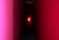Gallery zandari 2013-1