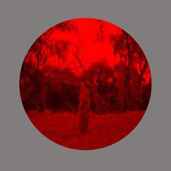 Redscape-8, 120x150cm, C print, 2013