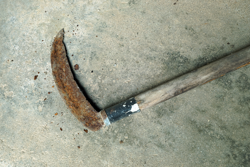 Fishhooks-38, Rusty sickle, 50x75cm,C pr