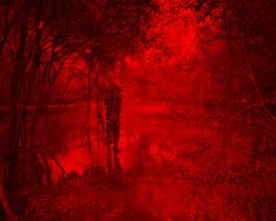 Redscape-22, 120x150cm, C print, 2010