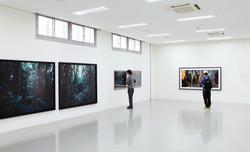 Daegu photo biennale 2012-1