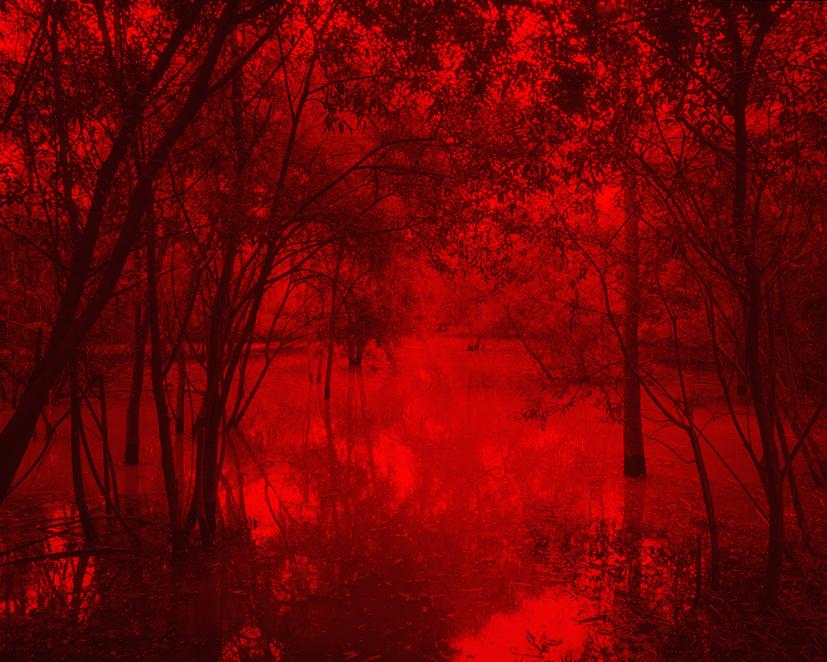 Redscape-24, 120x150cm, C print, 2011